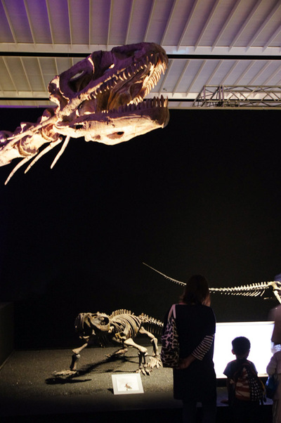 Dinosaur03