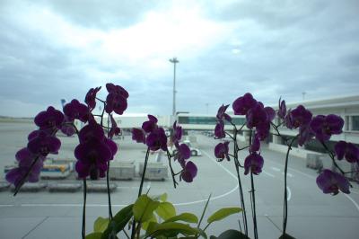 Okinawa2011_03