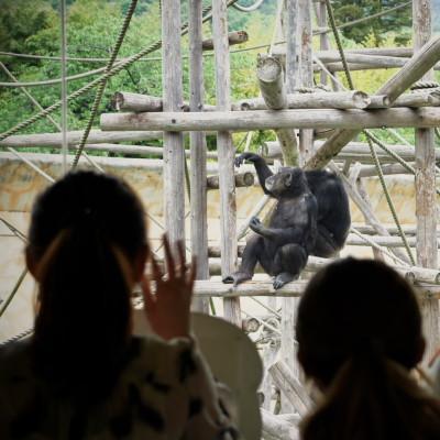 Zoo2012